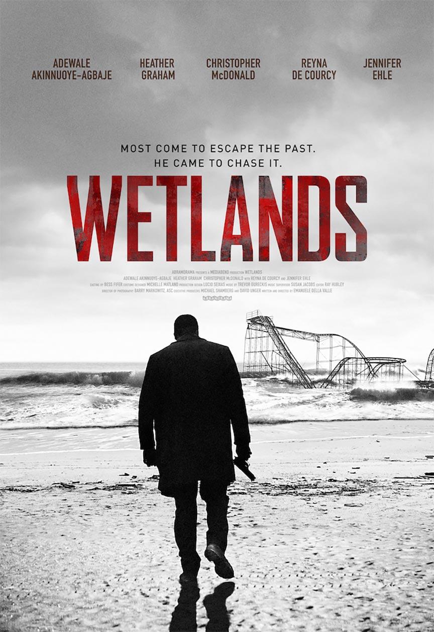 Wetlands Poster #1