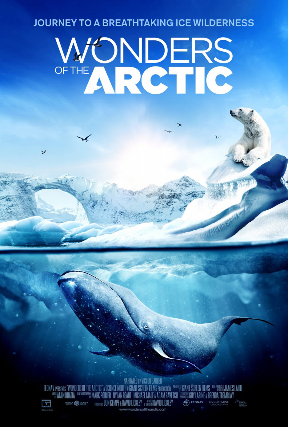Wonders of the Arctic Poster #1