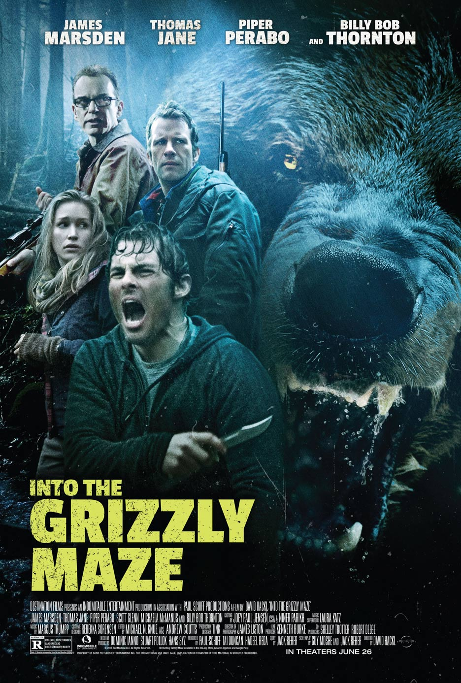 Into the Grizzly Maze Poster #1