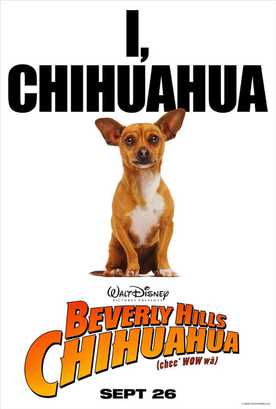 Beverly Hills Chihuahua Poster #2