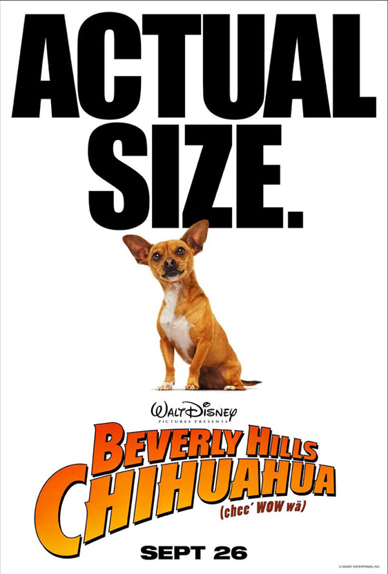Beverly Hills Chihuahua Poster #4