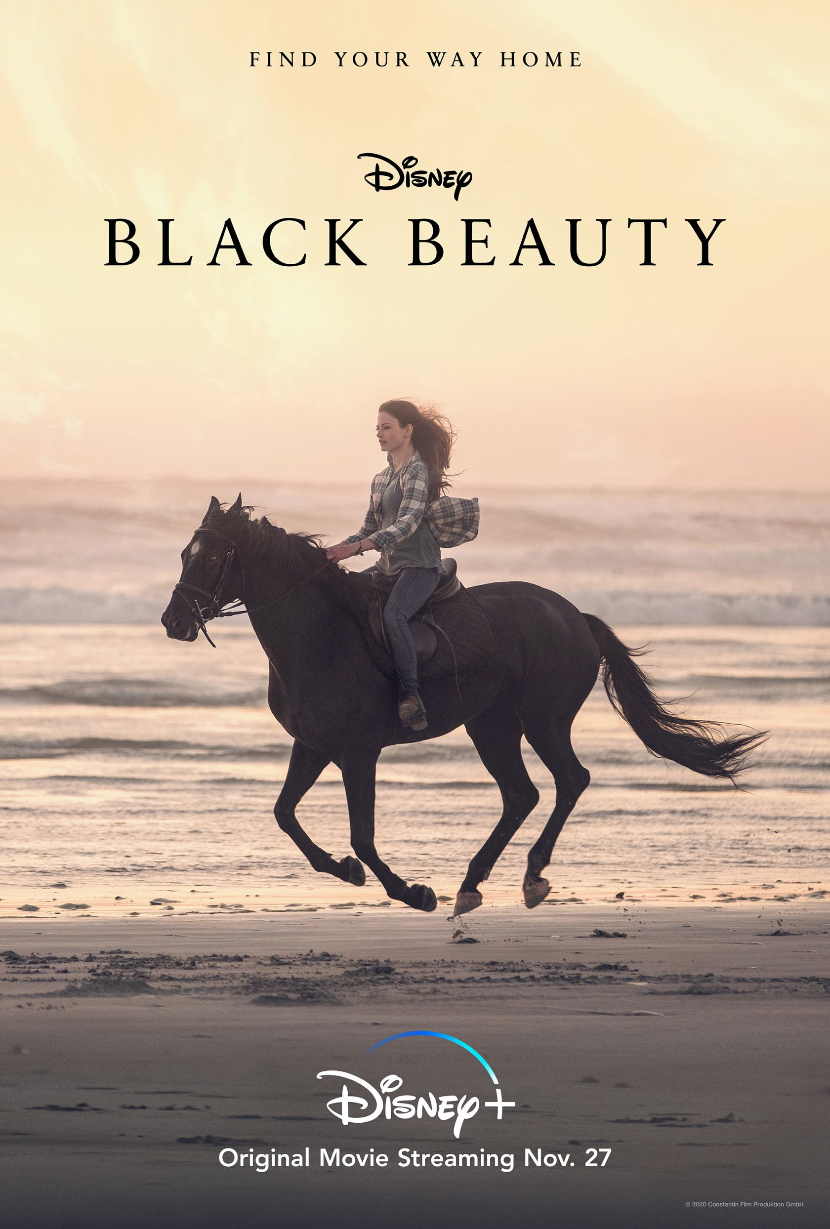 Black Beauty Poster #1