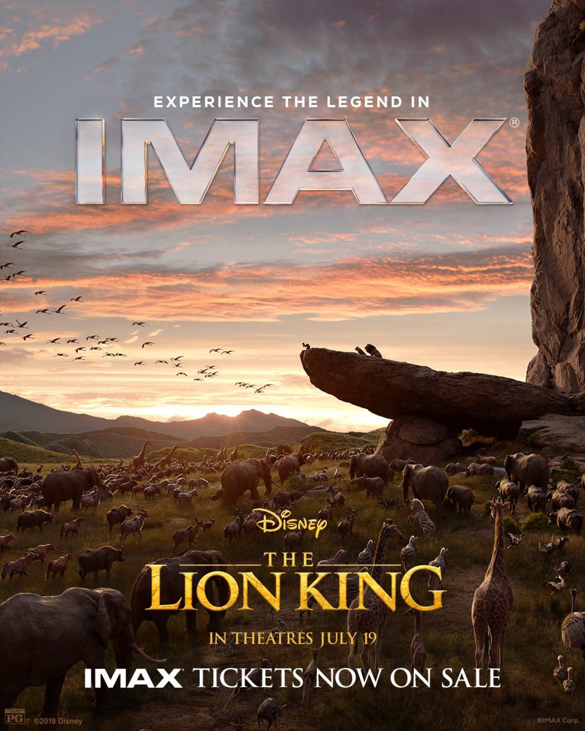 the lion king  2019  poster  13