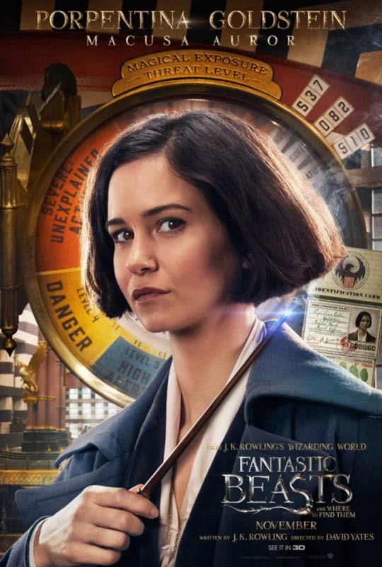 Fantastic Beasts and Where to Find Them Poster #14