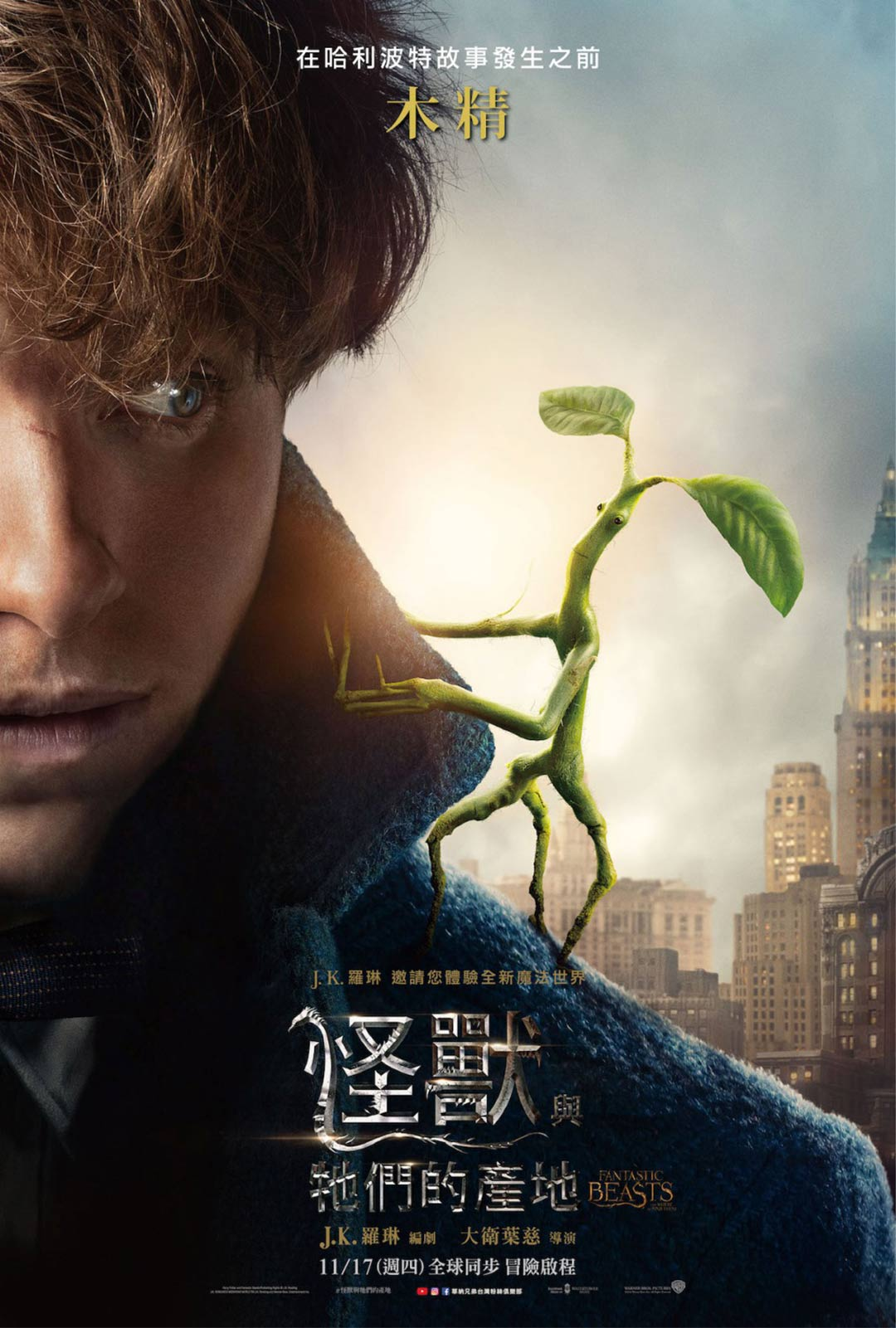 Fantastic Beasts and Where to Find Them Poster #24