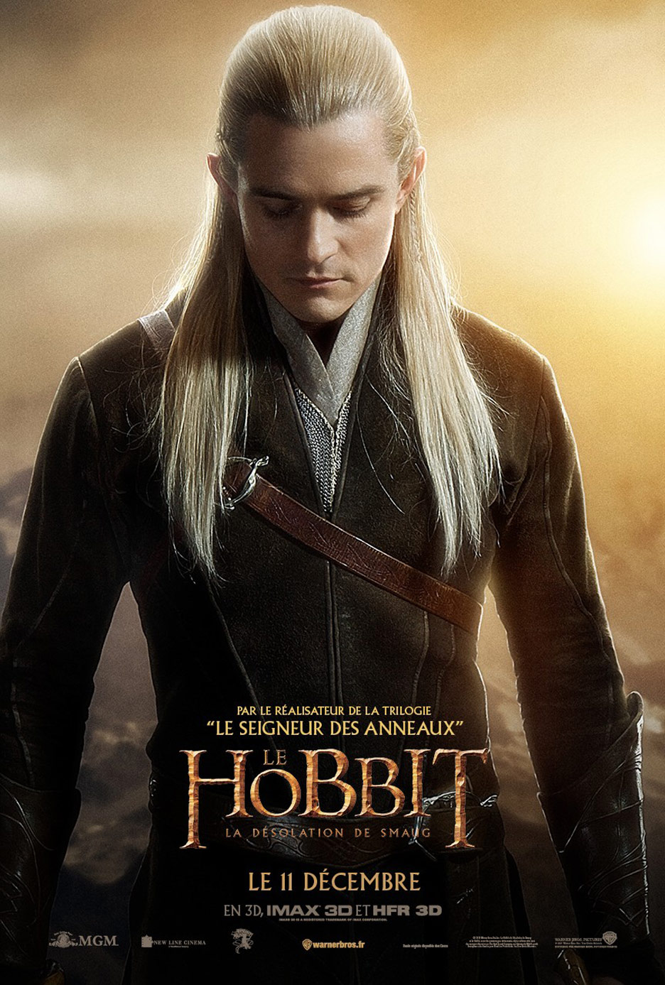 The Hobbit: The Desolation of Smaug Poster #18