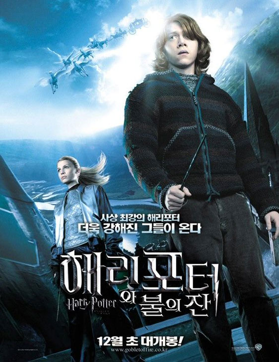Harry Potter and the Goblet of Fire Poster #14