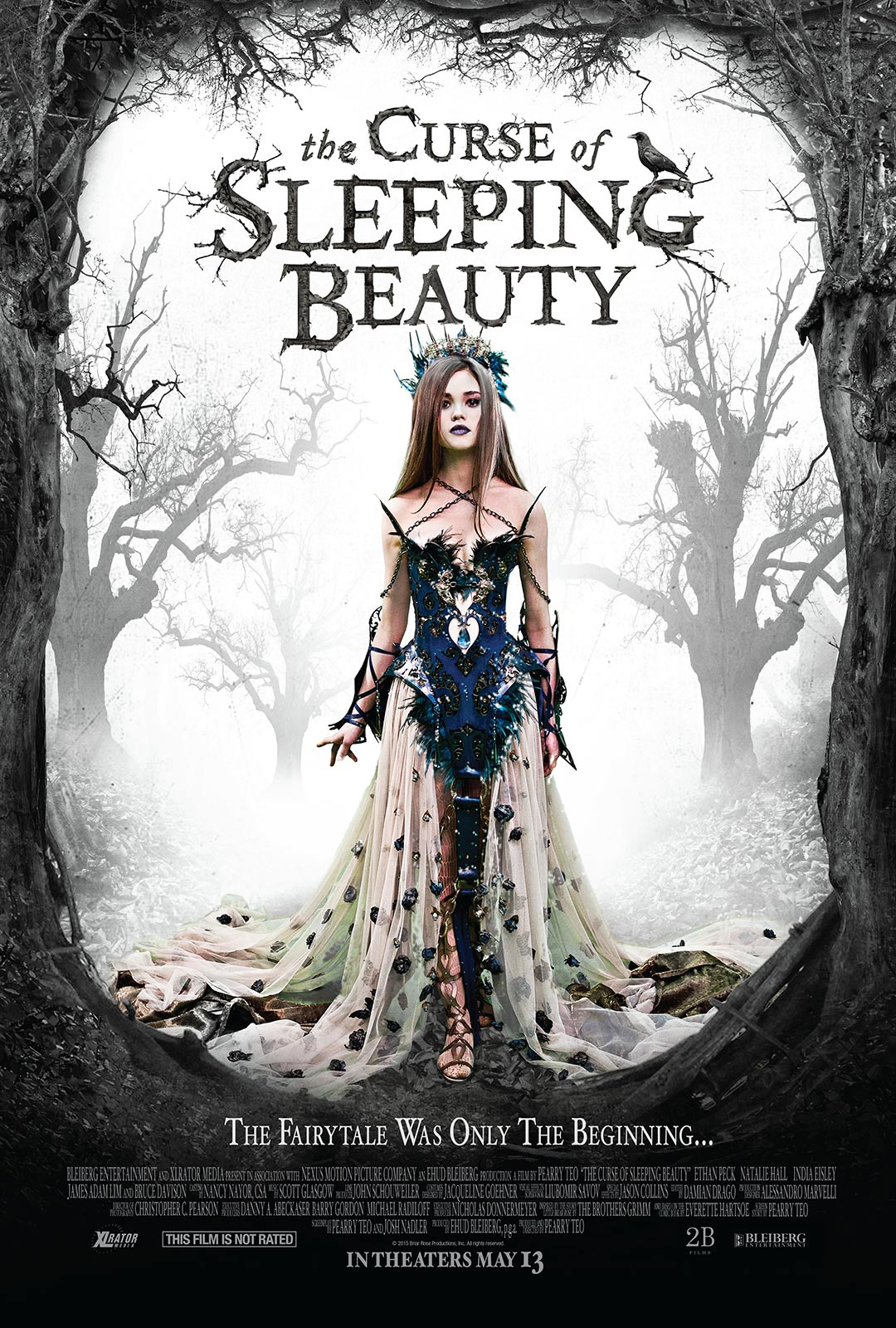 The Curse of Sleeping Beauty Poster #1