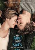The Fault in Our Stars (2014) Poster #1 Thumbnail