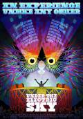 EDC 2013: Under the Electric Sky (2013) Poster #5 Thumbnail