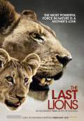 The Last Lions (2011) Poster #1 Thumbnail