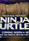 Teenage Mutant Ninja Turtles (2014) Poster #16 Thumbnail