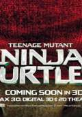 Teenage Mutant Ninja Turtles (2014) Poster #17 Thumbnail