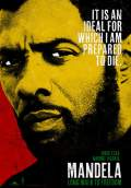 Mandela: Long Walk to Freedom (2013) Poster #1 Thumbnail