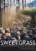 Sweetgrass (2009) Poster #1 Thumbnail