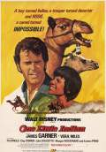 One Little Indian (1973) Poster #1 Thumbnail