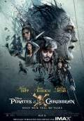 Pirates of the Caribbean: Dead Men Tell No Tales (2017) Poster #21 Thumbnail