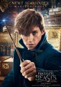 Fantastic Beasts and Where to Find Them (2016) Poster #11 Thumbnail
