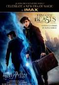 Fantastic Beasts and Where to Find Them (2016) Poster #15 Thumbnail