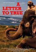 A Letter to True (2004) Poster #1 Thumbnail