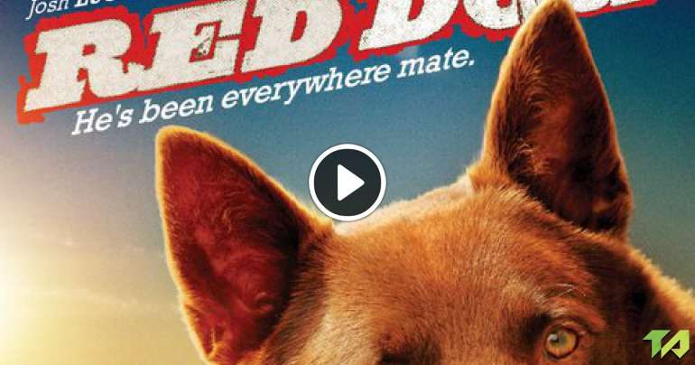 red dog josh lucas interview 2011