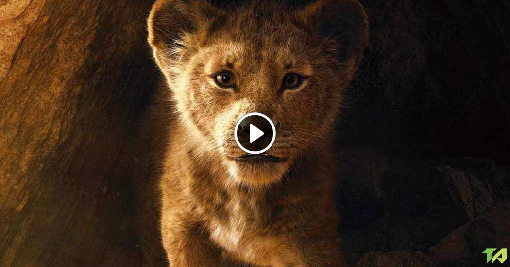the lion king teaser trailer  2019